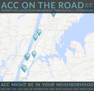 ACC is on the Road!
